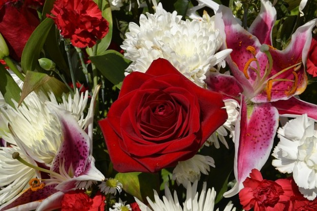 flower-3287773_640